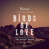 Birds Of Love (The Galaxy Remix) by Monn