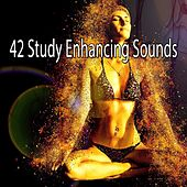 42 Study Enhancing Sounds by Classical Study Music (1)