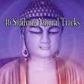 46 Studying Natural Tracks by Classical Study Music (1)