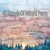 43 Sounds Of Natural Peace von Massage Therapy Music
