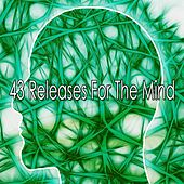 43 Releases For The Mind von Entspannungsmusik