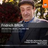 Bruk: Orchestral Music, Vol. 1 von Various Artists