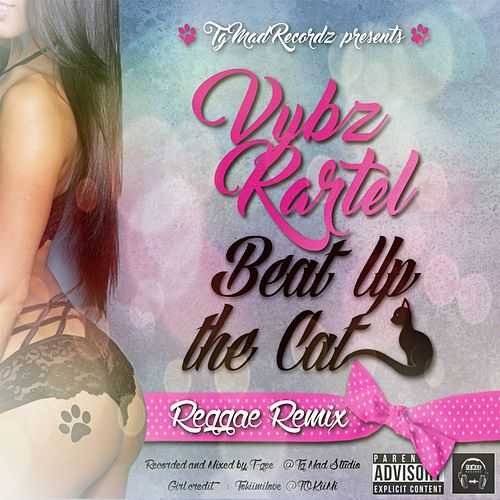 Beat up the Cat (Reggae Remix) by VYBZ Kartel