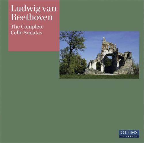 BEETHOVEN, L. van: Cello Sonatas Nos. 1-5 / Horn Sonata, Op. 17 (arr. for cello and piano) (Schiefen, Perl) by Alfredo Perl