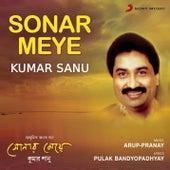Sonar Meye by Kumar Sanu