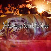54 Relaxation Sounds For Sleep von Relajacion Del Mar
