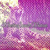 58 Resting Sounds Of Nature von Rockabye Lullaby