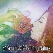 54 Sounds Of Soothing Nature by Deep Sleep Music Academy