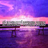 58 Naturally Occuring Sounds de Zen Meditation and Natural White Noise and New Age Deep Massage