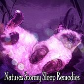 Natures Stormy Sleep Remedies by Thunderstorm
