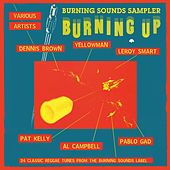 Burning Sounds Sampler Burning Up by Various Artists