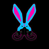 Follow the Bunny di Bunnydeth♥