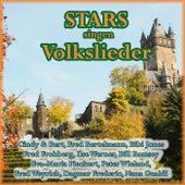 Stars singen Volkslieder by Various Artists