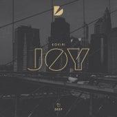 Joy by Kokiri