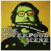 The Amazing Adventures of The Liverpool Scene by Liverpool Scene