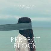 Perfect Block de Dita Nurdian