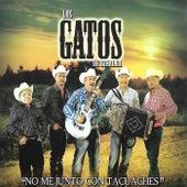 No Me Junto Con Tacuaches by Los Gatos De Sinaloa