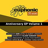 20 Years Euphonic, Vol. 1 by Various Artists