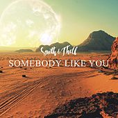 Somebody Like You (Radio Edit) von Smith