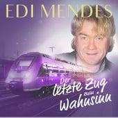 Der letzte Zug zum Wahnsinn by Edi Mendes