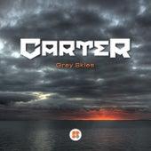 Grey Skies - Single by Carter