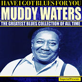 Muddy Waters (Have I Got Blues For You) di Muddy Waters