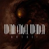 Wenn Engel Weinen: Gothic de Various Artists
