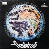 Zurück zur Erde von The Firebirds
