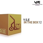 Y.s.e. in the Box, Vol. 12 by Various Artists