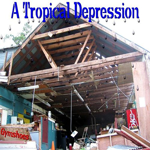 A Tropical Depression by Gymshoes