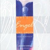 Was die Engel uns sagen by Manfred Siebald