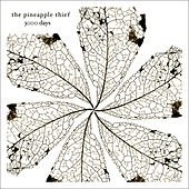 3000 Days by The Pineapple Thief