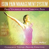 Free Yourself from Chronic Pain by David Ison