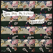 Washburn (single) by These Arms Are Snakes
