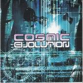 Cosmic Evolution de Various Artists