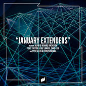 Flashover Recordings - January Extendeds von Various Artists