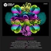The 'VAults' Remixes de Ki Creighton
