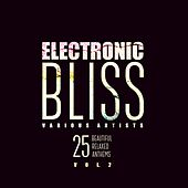 Electronic Bliss (25 Beautiful Relaxed Anthems), Vol. 2 by Various Artists