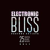 Electronic Bliss (25 Beautiful Relaxed Anthems), Vol. 1 by Various Artists