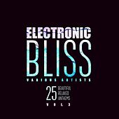 Electronic Bliss (25 Beautiful Relaxed Anthems), Vol. 3 by Various Artists