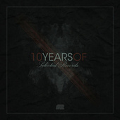 10 Years of Selected Records Part.3 by Various Artists
