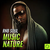 Rnb Soul Music Nature by Various Artists