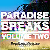 Paradise Breaks Volume Two von Various