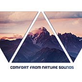 Comfort from Nature Sounds de Nature Sounds Artists