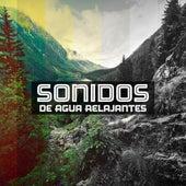 Sonidos de Agua Relajantes by Nature Sound Series
