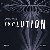 Evolution EP by Tephra & Arkoze