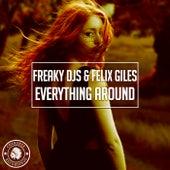 Everything Around by Freaky DJ's