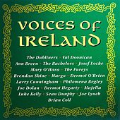 Voices Of Ireland de Various Artists