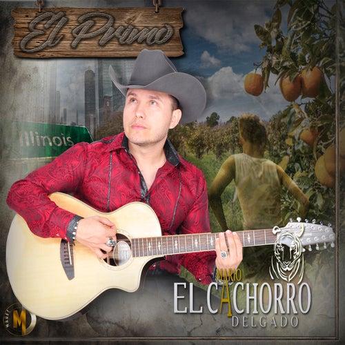El Primo by Mario