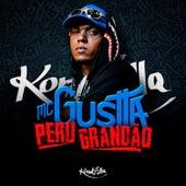 Peru Grandão de MC Gustta